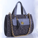 Ladies Bag (BF1151-02)