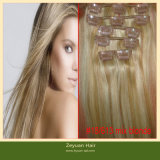 Full Head Clip in Hair Extensions Clip in Remy Hair (C-015)