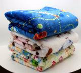 Printed Blanket/Polyester Blanket/Fleece Throw Blanket