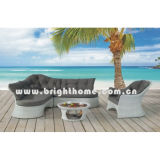 Outdoor Furniture / Wiker Furniture Sofa (BP-832)