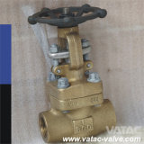 Forged Bronze Gate Valve (CL800)