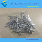 Clout Nails with Factory Price, High Quality, Various of Size