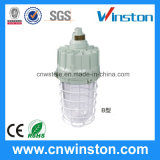 High Power Explosion Proof Lamp (BAD61-B)