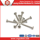Stainless Steel Truss Head Self Drilling Screw