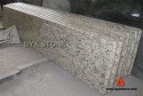 Santa Cecilia Light Granite Kitchen Countertop/Worktop/Benchtop