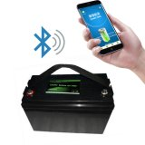 Smart BMS 12V LiFePO4 Lithium Battery with Bluetooth