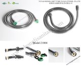21004 Stainless Steel Shower Hose