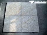 Bushhamered G350 Yellow Rock Granite Tile for Flooring
