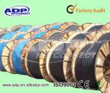 Yjv Electric Cable XLPE Insulation PVC Sheath 3*10mm2+1*6mm2