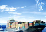 Sea Freight Door to Door From China to USA (Sea Freight)