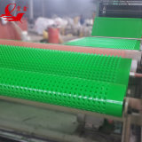 Waterproof Dimple Board/HDPE Dimple Drainage Board