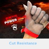 Safety Cut Proof Stab Resistant Stainless Steel Wire Butcher Glove/Oyster Gloves