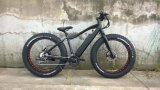 Fat Electric Bike