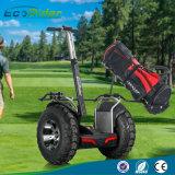off-Road Big Tires 4000W 72V Two Wheels Golf Buggy