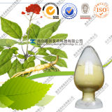Top-Selling HPLC 1%-10%Ginsenoside Ginseng Leaf Extract