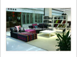 French Style Living Room Fabric Sofa Furniture (LS-103 & T-53B & PS-S0304)