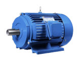 Three Phase Electric Motor with Best Price