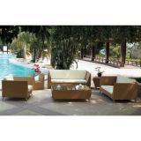 High Quality Rattan Furniture (WS-06006)