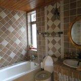 Clear SMT-555 Senior Bathroom Silicone Sealant