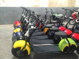 800W Mini Electric Motorcycle with Cheap Price