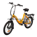 M 20'' Wheel Alunimum Frame Electric Bicycle with Lithium Battery (TDN113Z)