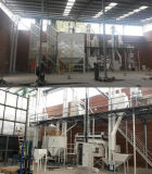 Buckwheat Seed Cleaning Line / Oat Seed Processing Line