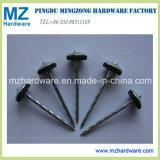 Hot Sales 9g 2.5′′ Galvanised Umbrella Head Roofing Nail