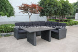 Five Pieces for The Cane Leisure Garden Patio Furniture Rattan Aluminum Sofa Set