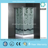 2014 New Modern Square Simple Shower Room (BLS-9616)