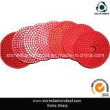 100mm Resin Red Diamond Wet Polishing Pads