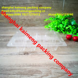 Clear Pet Plastic Quial Egg Trays Suppliers