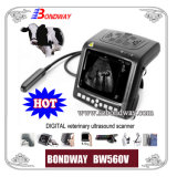 Digital Veterinary Ultrasound Scanner (BW560V)