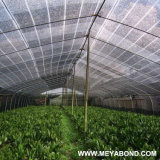 HDPE Black 90% Sun Shade Sail Net