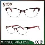 New Fashion Metal Frame Eyewear Eyeglass Optical for Woman 44-753