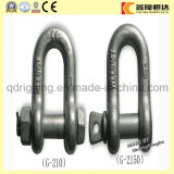 Us Type Drop Forged Screw Pin Bow Shackle Anchor Shackle