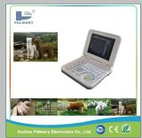 Digital Laptop Veterinary Ultrasound Scanner B Mode