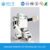 Hot Sale Ce Art Educational 3D Robot