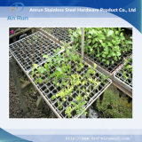 Crimped Wire Mesh for Flower Fence
