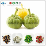 ODM/OEM High-Quality Garcinia Cambogia Extract Loss Weight