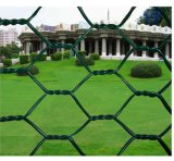 PVC Coated Hexagonal Wire Mesh