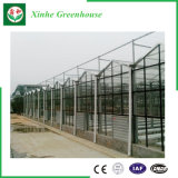 Hot-DIP Galvanized Glass Greenhouse for Vegetables/Flowers