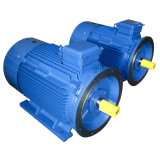 Y3 Series Three-Phase Asynchronous AC Induction Motors (IP55)
