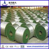 Hot Sell 9.5mm Aluminium Wire Rod 1350h12