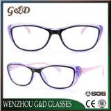 Latest New Popular Design PC Reading Glasses 86020