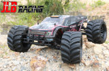 2.4G 1/10th Electric Brushless RC Car