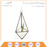 Unique Handmade Geometric Air Planter Glass Terrarium Decoration