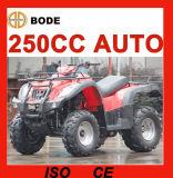 New 250cc Automatic Farm ATV (MC-356)