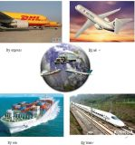 Shipping Agent/ Forwarder to Egypt