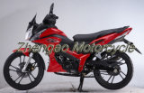 120cc Cub Street Sport Motorcycle for Scooter (110-38)