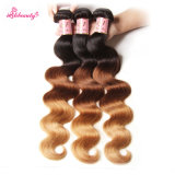 Ombre Color Malaysian Remy Hair Body Wave Hair Bundles